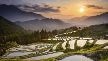 Maruyama rice terraces at sunset, Mie prefecture