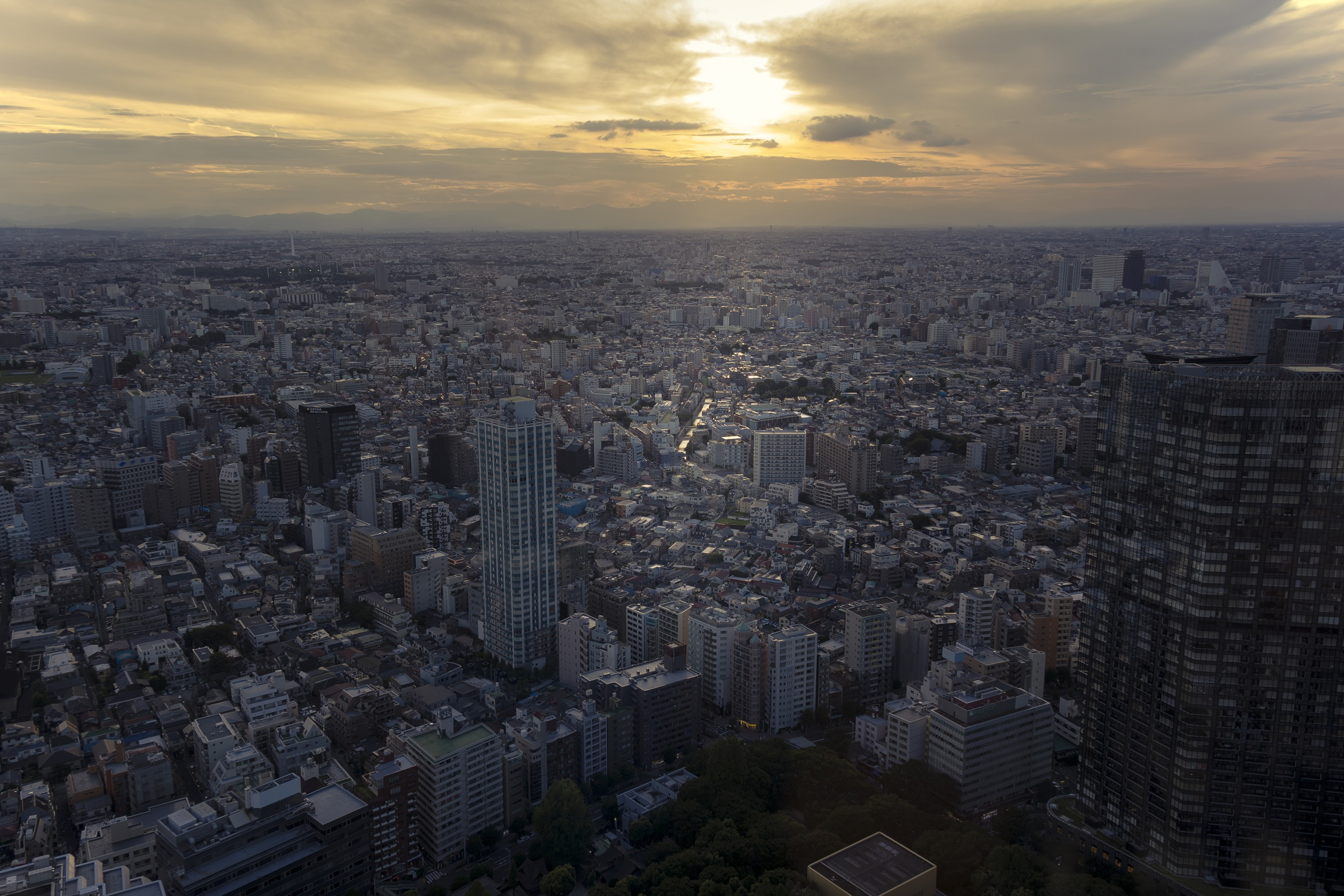 The view at dusk from the 45th floor of the Tokyo Metropolitan Government Offices building in the Japanese capital