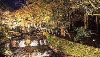 Kyoto, Japan - November 22, 2013: Kifune Shrine is a Shinto shrine located at SakyO-ku in Kyoto, Japan